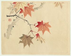 瀧和亭 Taki Katei ( 1830 - 1901 ) Maple Leaves