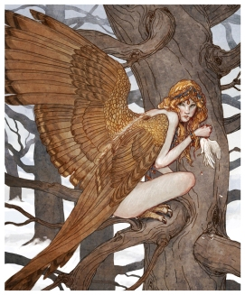 harpy_by_bluefooted-d3cdq5m