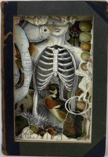 Alexander Korzer-Robinson 1b3aa00afd4fe089b585c95614040b06--assemblage-art-altered-books