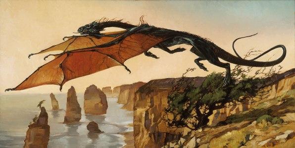 Heather Theurer air-dragon