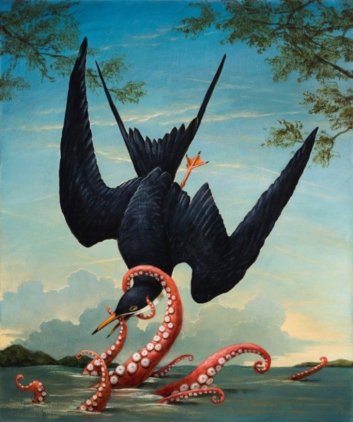 Kevin Sloan Birds_of_AmericaIcarus-1