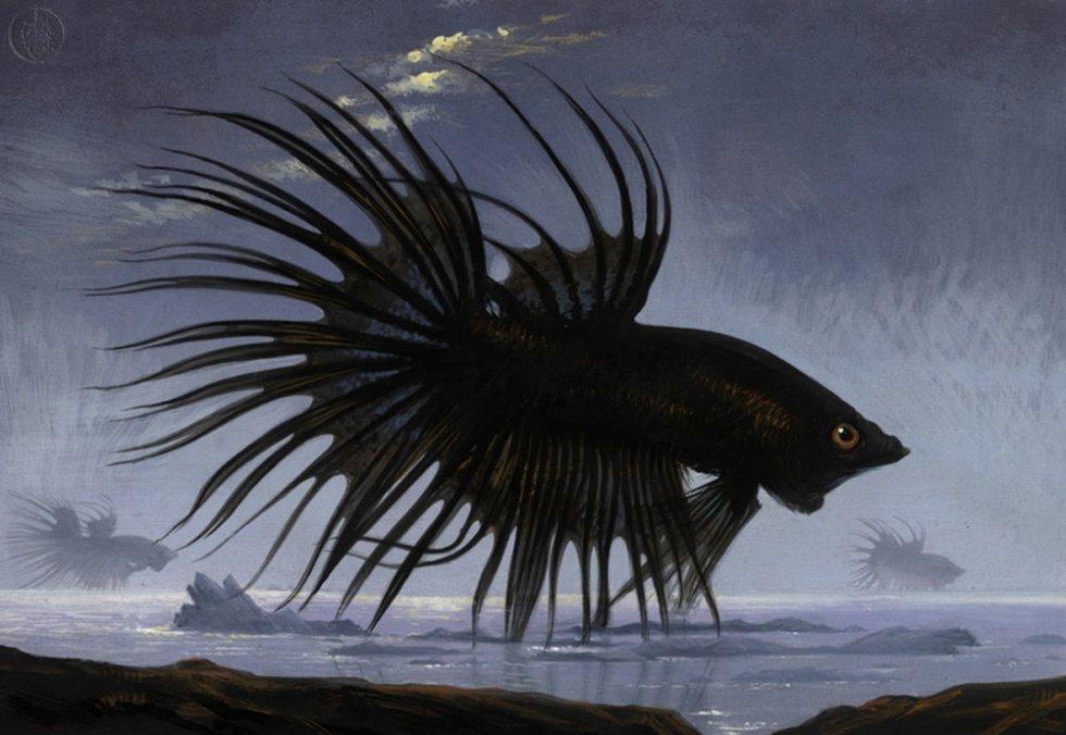 Bill Mayer-Black-Fish