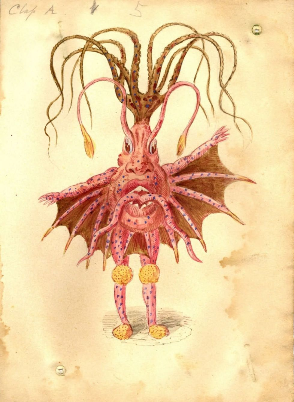 19th century sea creature costume