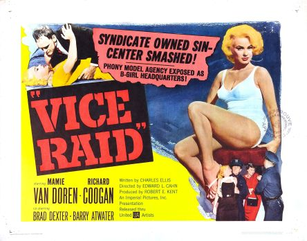 vice_raid_poster_02