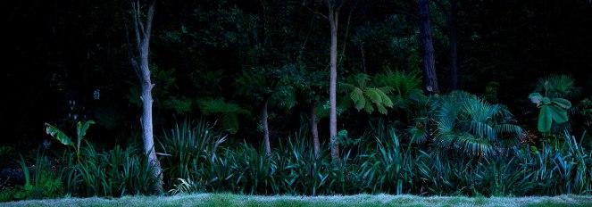 Ellie Davies Silent-Dark-and-Deep-1