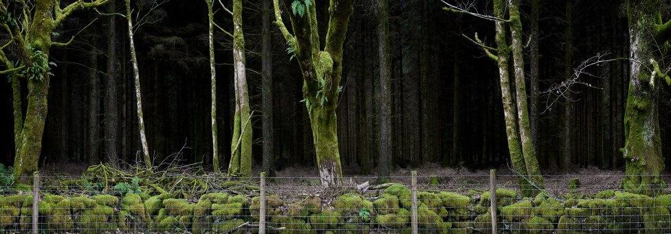 Ellie Davies Silent-Dark-and-Deep-11