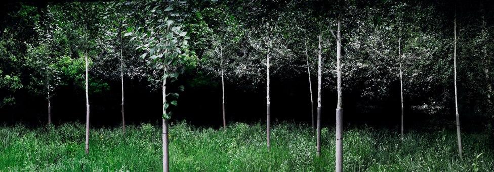 Ellie Davies Silent-Dark-and-Deep-6