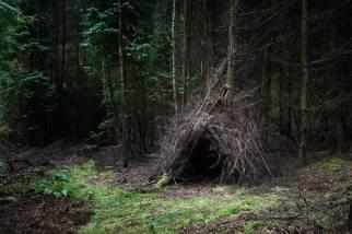 Ellie Davies The-Dwellings-2