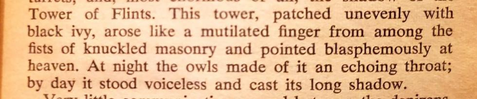 description of Gormenghast from Titus Groan