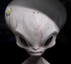 jeff-mcateer-alien-jeff-mcateer-01